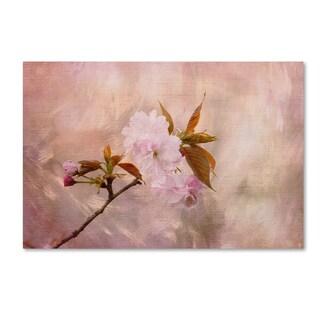 Jai Johnson 'Cherry Blossom' Canvas Art