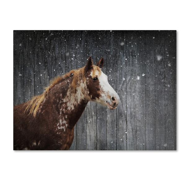 Jai Johnson 'Winters Arrival Horse' Canvas Art