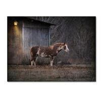 Jai Johnson 'Waiting For Winter Horse' Canvas Art