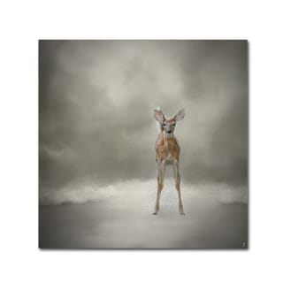 Jai Johnson 'Stand Strong Little Fawn' Canvas Art