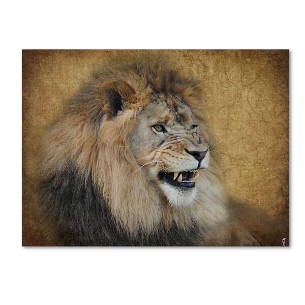 Jai Johnson 'Snarling Male Lion Portrait' Canvas Art