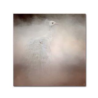 Jai Johnson 'Peacock 6' Canvas Art