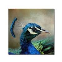 Jai Johnson 'Peacock 3' Canvas Art