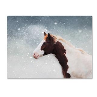 Jai Johnson 'Paint Horse In The Snow' Canvas Art