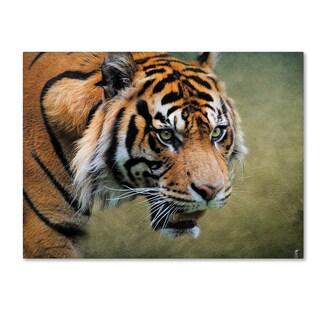 Jai Johnson 'On The Prowl Bengal Tiger' Canvas Art