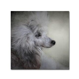 Jai Johnson 'Longing Silver Standard Poodle' Canvas Art
