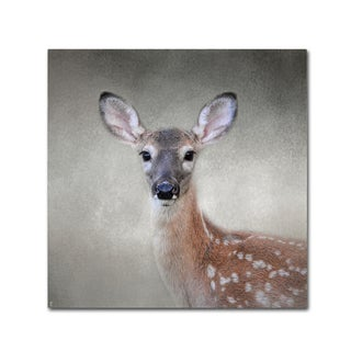 Jai Johnson 'Little Miss Lashes White Tailed Fawn' Canvas Art
