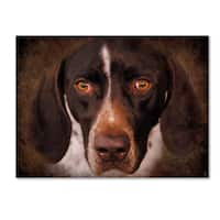 Jai Johnson 'German Shorthaired Pointer Portrait' Canvas Art