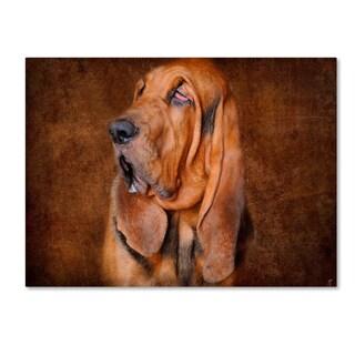 Jai Johnson 'Bloodhound Portrait' Canvas Art