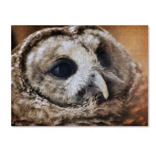 Jai Johnson 'Barred Owl' Canvas Art
