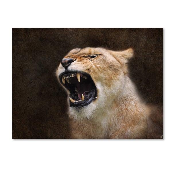 Jai Johnson 'Angry Lioness Portrait' Canvas Art