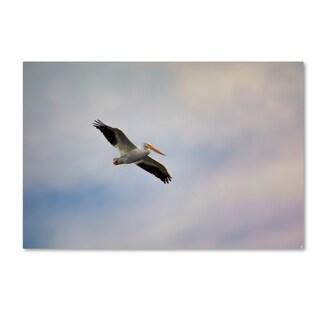 Jai Johnson 'A Beautiful Day To Fly' Canvas Art