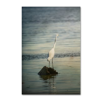 Jai Johnson 'Great White Egret At Sunrise' Canvas Art