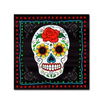 Fiona Stokes-Gilbert 'Sugar Skull I' Canvas Art