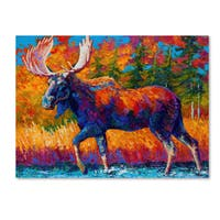 Marion Rose 'Moose Encounter' Canvas Art