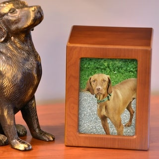 Photo Frame Pet Urn, Honeynut - X-Large