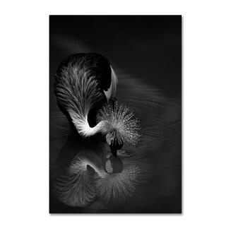C.S. Tjandra 'The Reflection' Canvas Art
