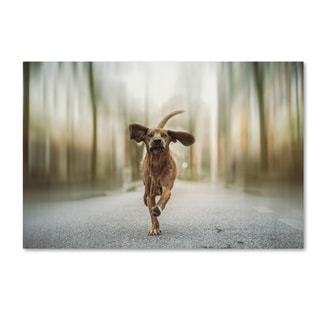Heike Willers 'Dancing In The Streets' Canvas Art