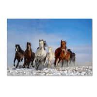 Libby Zhang 'Mongolia Horses' Canvas Art