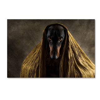 Heike Willers 'Golden Eyes' Canvas Art