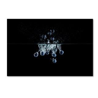 Johanna 'Blueberries Splash' Canvas Art