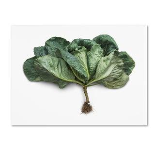 Johanna 'Green Leaf' Canvas Art