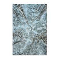 Winter Frost 'Winter Frost' Canvas Art