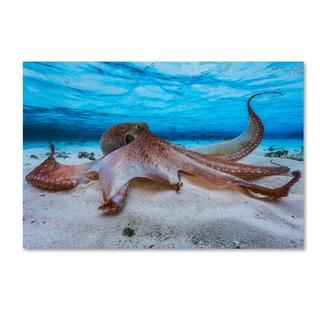 Barathieu Gabriel 'Octopus' Canvas Art