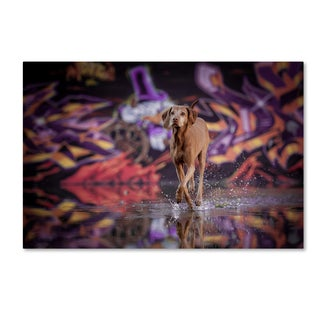 Heike Willers 'Dancer In The Dark' Canvas Art