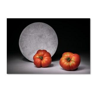 Christophe Verot 'Full Moon' Canvas Art