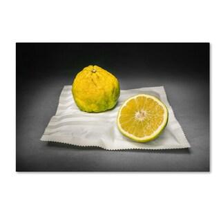 Christophe Verot 'Citrus' Canvas Art