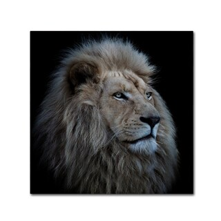 Louise Wolbers 'Proud Lion' Canvas Art