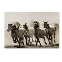 Heidi Bartsch 'Horse' Canvas Art
