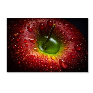 Aida Ianeva 'Red Apple' Canvas Art