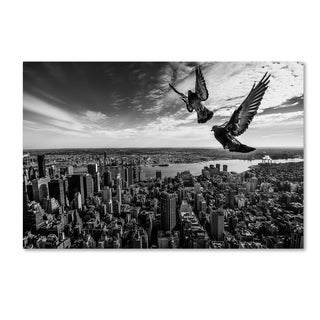 Sergio Sousa 'Pigeons On The Empire State Building' Canvas Art