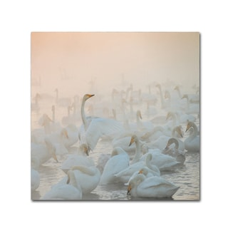 Dmitry Dubikovskiy 'Song Of The Morning Light' Canvas Art