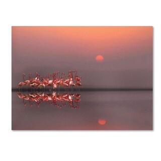 Anna Cseresnjes 'Purple Sunset' Canvas Art