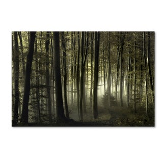 Norbert Maier 'Into The Unknown' Canvas Art