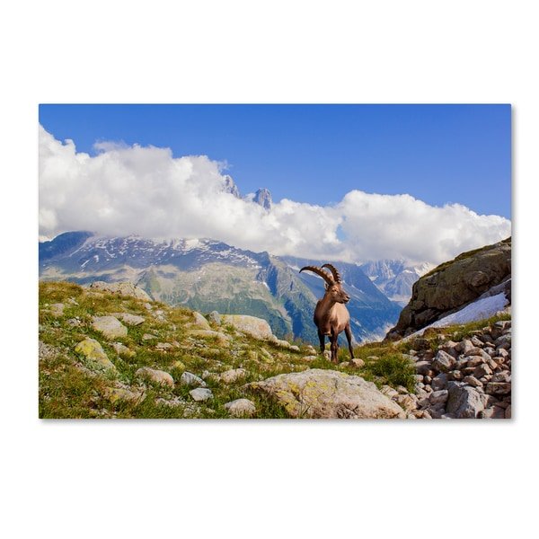 Mircea Costina 'The King Of Mont Blanc' Canvas Art