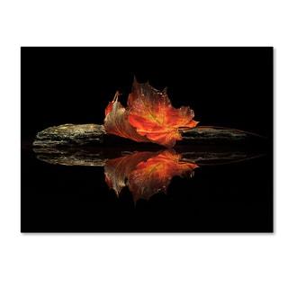 Aida Ianeva 'Autumn Colors' Canvas Art