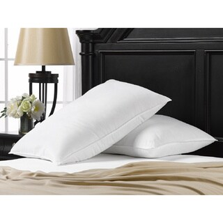 550 Fill Power Down Blend Pillow (Set of 2)