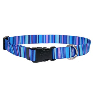 Red Haute Horse Blue Stripes Horse Collar