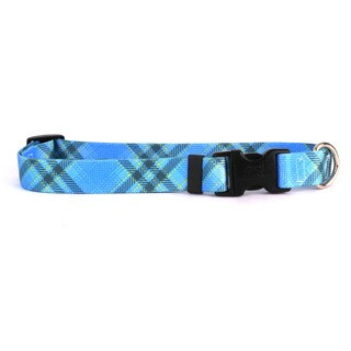 Red Haute Horse Blue Kilt Horse Collar