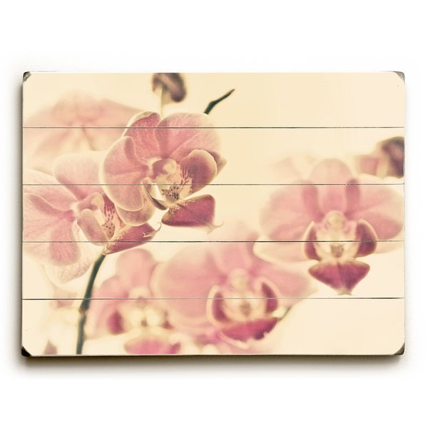 Tiger Lily Pink - Wall Decor by Lisa Argyropoulos