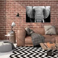 Courtside Market Elephant Lore Gallery Wrapped Canvas Wall Art - 24x30
