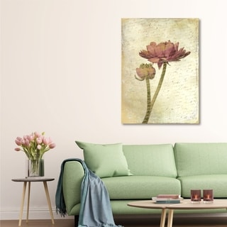Courtside Market Ranunculus Bloom I Gallery Wrapped Canvas Wall Art - 32x40