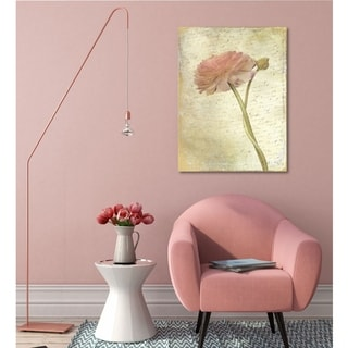 Courtside Market Ranunculus Bloom II Gallery Wrapped Canvas Wall Art - 32x40