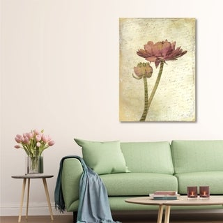 Courtside Market Ranunculus Bloom I Gallery Wrapped Canvas Wall Art - 16x20