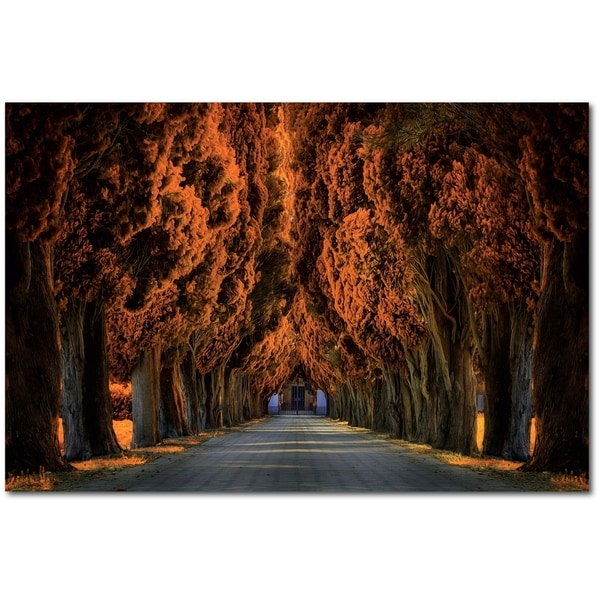 Courtside Market Autumn Treeline Gallery Wrapped Canvas Wall Art - 30x45