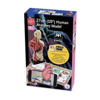 "Edu Toys 10"" Human Anatomy A.R. Version"